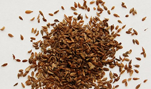sri satymev edible carrot seeds gajar k beej 200g amazon in