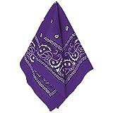 Amscan Bandana, Party Accessory, Purple