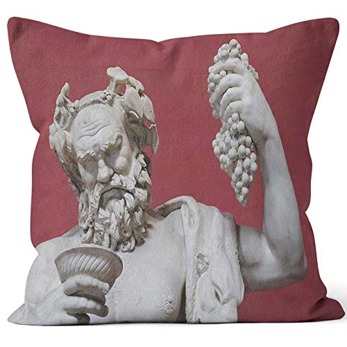 Nine City Bacchus Throw Pillow Cushion Cover,HD Printing Decorative Square Accent Pillow Case,16