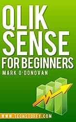 Qlik Sense for Beginners (English Edition)