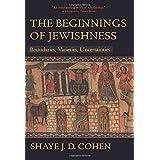 The Beginnings of Jewishness: Boundaries, Varieties, Uncertainties (Hellenistic Culture and Society) (Volume 31)