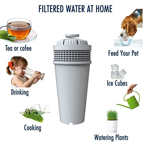 Water Bacteria Filter. Fits Wamery's Filtration kit. Cartridges to reduce bacteria & microorganisms. Clear water from kitchen faucets & natural sources. Filters suitable for kids by Wamery (Image #2)
