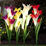 Solar Garden Stake Lights Outdoor, MayBest Solar Powered Lights, Lily Flower Lights, Multi-Color Changing LED Solar Decorative Lights for Garden Patio Yard Lawn Path (Purple+Red+White+Yellow) Review