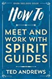 How To Meet and Work with Spirit Guides (How to (Llewellyn))