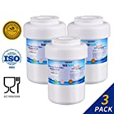 Wsg 1 Water Filter Golden Icepure Refrigerator Water Filter Replacement for GE MWF SmartWater, MWFA, MWFP, GWF, GWFA, Kenmore 9991,46-9991, 469991 (3)