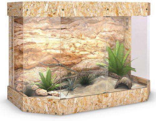 Reptil Tortuga de madera de terrario Panoramic – Puerta Corredera de cristal 120 x 80 x 60 cm: Amazon.es: Productos para mascotas