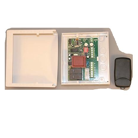 SEADOSHOPPING Nice Flor-s - Transmisor remoto compatible con ...