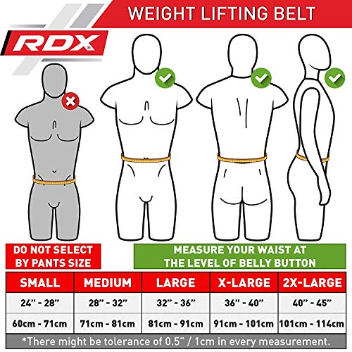RDX Weight Lifting Belt 6'' Cow Hide Leather Double Prong Back Support Gym Exercise Bodybuilding Training Workout by RDX (Image #2)