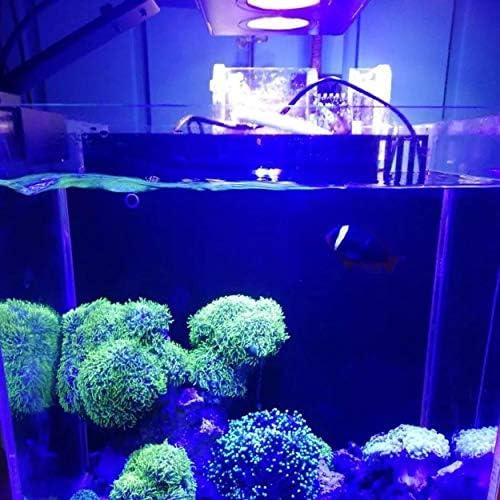 Lorenlli Luce per Acquario a LED Acquario per Interni 30W Illuminazione a LED per Acqua salata con Touch Control per Acquario di barriera corallina
