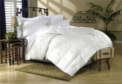 Egyptian Bedding 1200 Thread Count King 1200TC Siberian Goose Down Comforter 750FP, White Solid 1200 TC by Egyptian Bedding