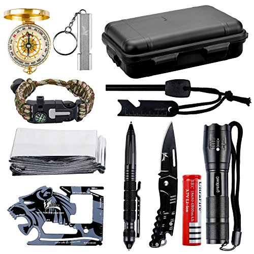 Wildness Survival Gear Kit with 18-in-1 Versatile Tool Card/Military Flashlight/Paracord Bracelet/Folding Knife/Emergency Blanket/Tactical Pen/Compass/Fire Starter/Metal Whistle (w/ Black Case)