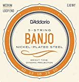 D\'Addario EJ61NY 5-String Banjo Strings, NY Steel, Medium 10-23