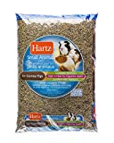 Hartz Small Animal Guinea Pig Food Pellets - 10Lb