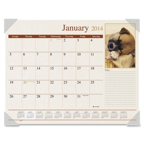 AT-A-GLANCE Visual Organizer Recycled Puppies Desk Pad, 22 x 17 Inches, 2013 (Mead Desk Organizer)
