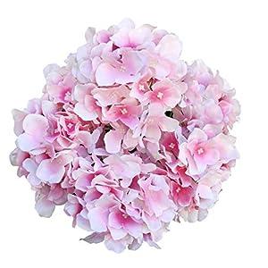 DALAMODA Pink Artificial Silk 6 Heads Hydrangea Bouquet,Flower Bunch DIY Home Hotel Wedding Party Garden Floral Decor Pack of 1 (91917-Pink) 38