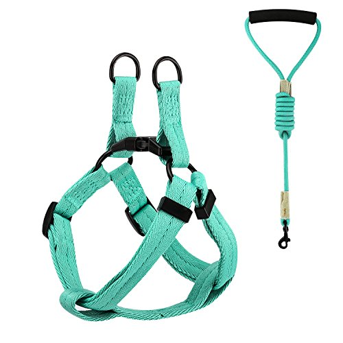 Best Dog Basic Halter Harnesses