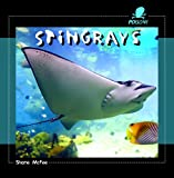 Stingrays, Shane McFee, 1404237976