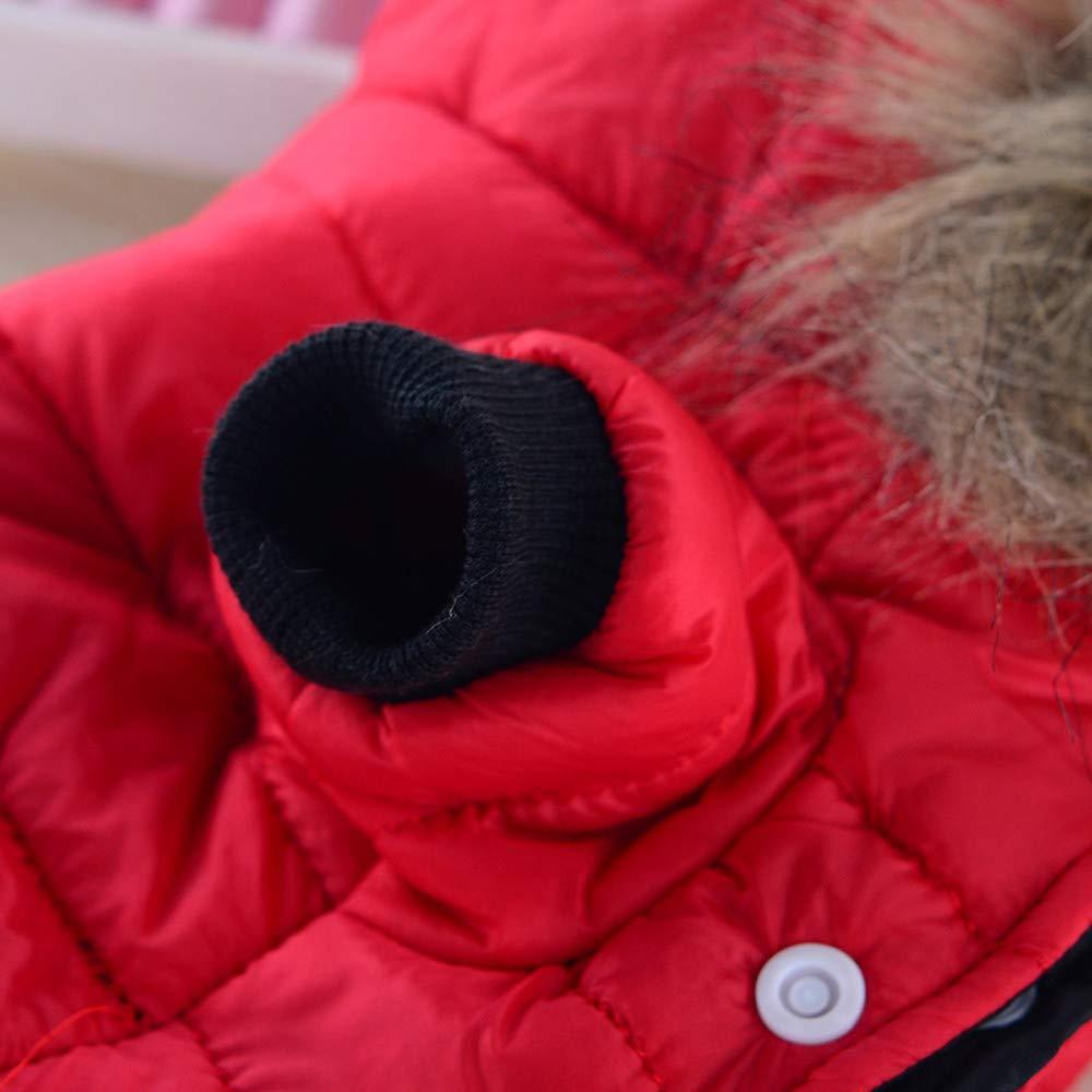 MEIbax Oto/ño Invierno Moda Calor Chaqueta de Plumas Perros Abrigo de algod/ón Sudaderas con Capucha Perros Gatos Abrigo Manga Larga Tops