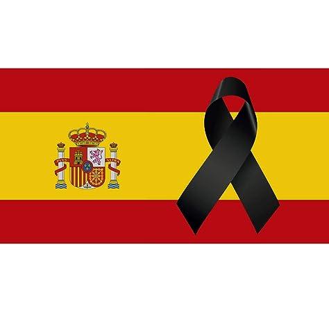 Oedim Bandera de España 85x150cm | Reforzada y con Pespuntes | Bandera de España con 4 Ojales Metálicos y Resistente al Agua: Amazon.es: Hogar