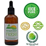 Ginger Concentrated Max Strength 1:1 50ml Non Alcoholic Tincture