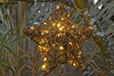 Willowbrite Star (12''), Willow branch with 50 LEDs