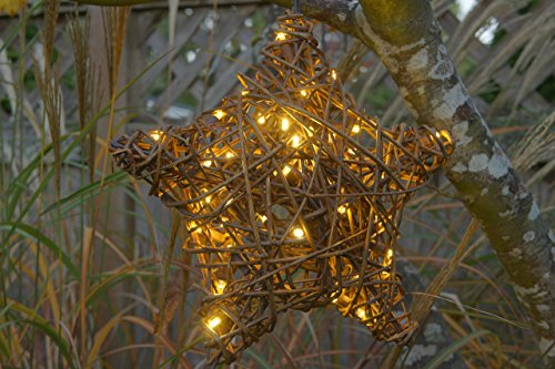 Willowbrite Star (12''), Willow branch with 50 LEDs by Willowbrite