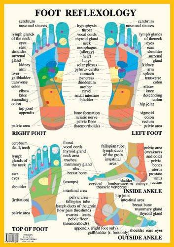 Foot Reflexology -- A2