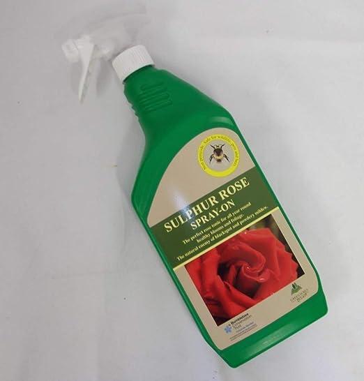 Sulphur Rose Insecticida para rosas, con pulverizador a presión: Amazon.es: Jardín