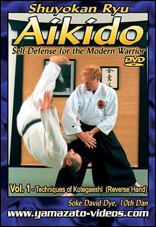 Amazon Aikido Self Defense For The Modern Warrior Vol I David