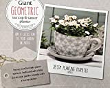New Giant Geometric Grey Design Tea Cup & Saucer Garden Fun Planter Pot