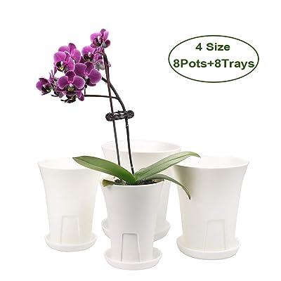MUZHI Breathable Plastic Orchid Pot, Deep Succulent Violet Plant Pot Collection of 4size (8 Pots+8Trays) White: Garden & Outdoor