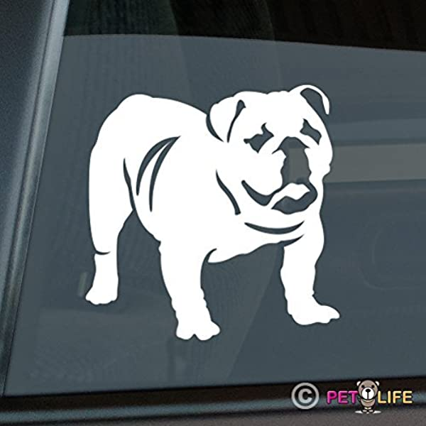 English Bull Dog Smiling Out Window VINYL DECAL Car Sticker Pet Animals Bully