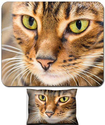 (Luxlady Mouse Wrist Rest and Small Mousepad Set, 2pc Wrist Support design IMAGE: 44415157 Portrait of cat brown mackerel tabby color close up Shallow depth of field)