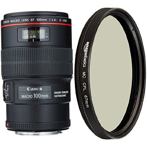 Canon EF 100mm f/2.8L IS USM Macro Lens for Canon Digital SLR Cameras and AmazonBasics Circular Polarizer Lens – 67 mm