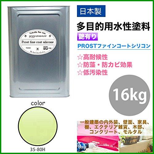 屋外用 多目的用 水性塗料 35-80H モーニンググリーン 16kg/艶あり 内装 外装 壁 屋内 ファインコートシリコン つやあり 多用途 B079YHVBM5 16kg|モーニンググリーン