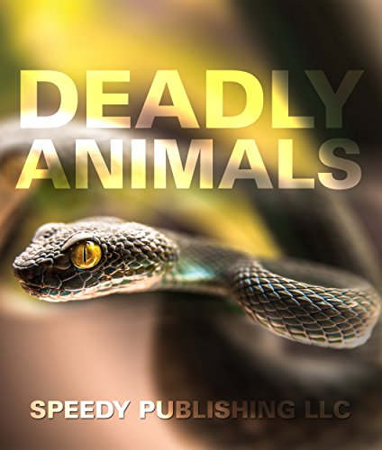 Deadly Animals in the Wild: From Venomous Snakes, Man-Eaters to Poisonous Spiders (Deadliest Animals on the (Poisonous Spiders)