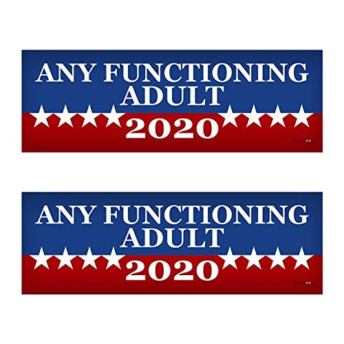 2 PACK! Any Functioning Adult 2020 Funny Bumper Sticker 3