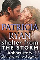 Shelter from the Storm, a short story (English Edition)