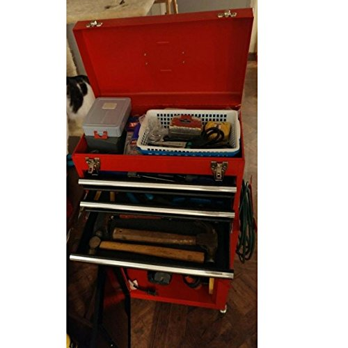 Garage Toolbox On Wheels Rolling Tool Cabinet Organizer Cart Kit Garage Storage Mechanics Organizer Metal Heavy Duty e Book by AllTim3Shopping.