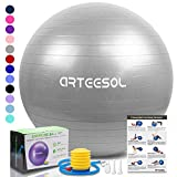 arteesol Exercise Yoga Ball, Extra Thick Stability Ball Chair, Professional Grade Anti Burst&Slip Resistant Balance, Fitness Physical Therapy, Birthing Ball with Air Pump (Silver, 65CM)