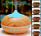 Essential-Oil-Diffusers-3