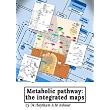Metabolic pathway: the integrated maps
