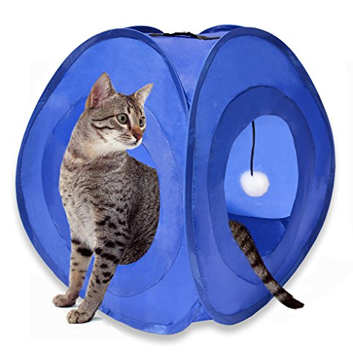 Kitty Ramp Scratching (MyDeal Pop Up Instant Kitty Play and Sleep Tent with Portable, Foldable Design and Built in Toy for Cats , Kittens , and other Small Animals!)