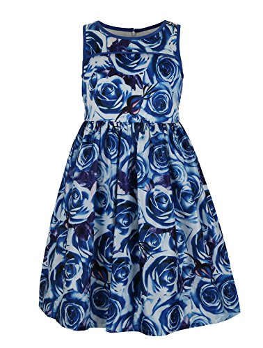 Emma Kids Dress (Emma Riley Girls' Satin Floral Party Dress 10 Blue)