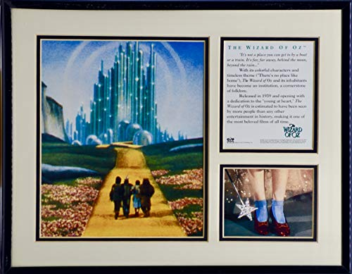 1995 - O.S.P. Inc - The Wizard Of Oz -Framed Photos and Info - Mylar Frame - 11x14 Inches - Collectible