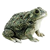 Michael Carr Designs 80072 Texas Toad Outdoor Statue Review