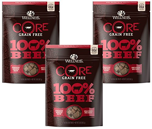 (3 Pack) Wellness 2 oz Dog Core 100% Beef Snack Freeze Dried Treats Review