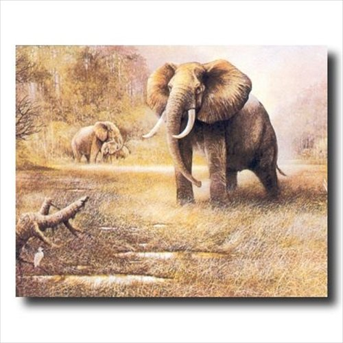Amazon.com: Framed Cherry African Elephant Safari Wall Decor Animal  Wildlife Pictures Art Print: Posters U0026 Prints