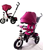 Little Tiger T400 Rotating seat Reclining backrest Kids Children Child Trike Tricycle, Purple