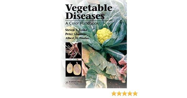 Amazon vegetable diseases a color handbook 9780123736758 amazon vegetable diseases a color handbook 9780123736758 steven t koike peter gladders albert o paulus books fandeluxe Choice Image